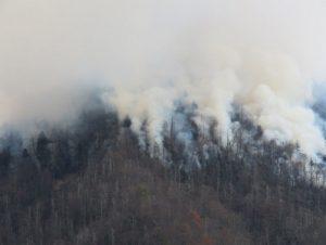 chimney-tops-fire